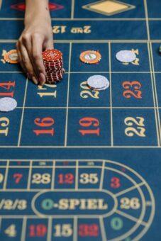 High roller casino winner